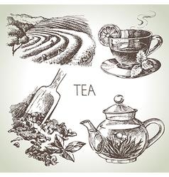 Hand drawn sketch tea set vector