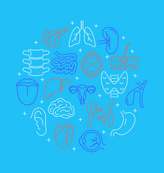 Human internal organs round concept banner in line vector