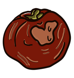 Rotten tomato on white background vector