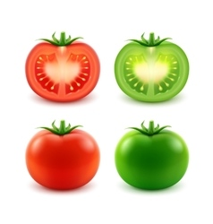 set big ripe red green fresh cut whole tomatoes vector image