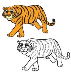 tiger coloring book vector image vector image