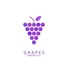 Abstract grapes logo template Purple Grapes vector image
