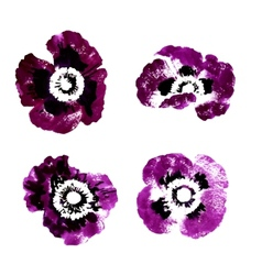 Collection of watercolor poppy flowers vector image