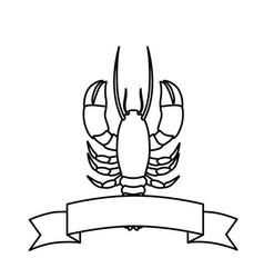 Monochrome line contour with lobster with ribbon vector