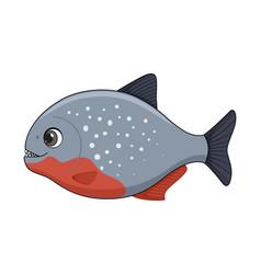 Piranha fish on a white background vector