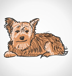 Sitting yorkshire terrier vector