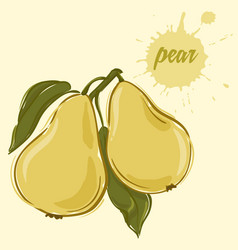 hand draw of pear vector image