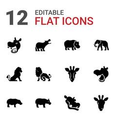12 safari icons vector