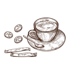 hand drawn set cup of hot drink oat cookie vector image