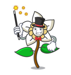 Magician jasmine flower mascot cartoon vector