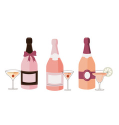 set fancy various bottles with colorful alcohol vector image