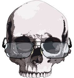skull in glasses for reading vector image