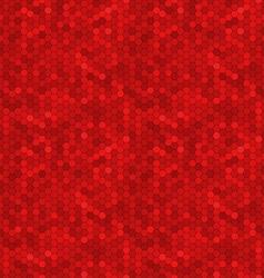 Hexagon ornament vector image vector image