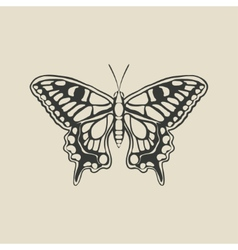 black butterfly machaon vector image vector image