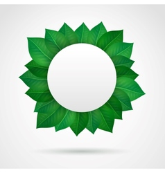Empty leaves frame vector