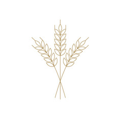wheat or barley icon outline for logo vector image vector image