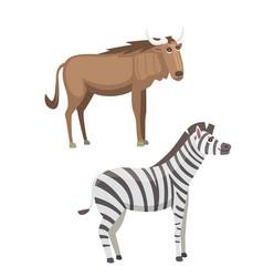 african animals cartoon set zebra and vector image vector image