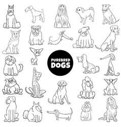 Cartoon purebred dogs set color book page vector