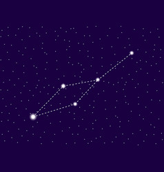 leo minor constellation starry night sky cluster vector image