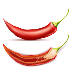 Realistic red pod of hot chili pepper vector