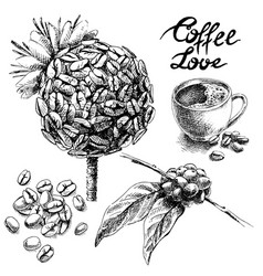 set of coffee beans and leaves cup vector image