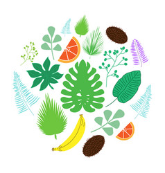 Set of tropical leaves and fruits icons in circle vector