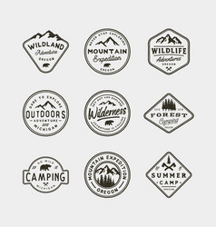 set of vintage wilderness logos hand drawn retro vector image vector image