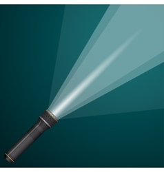 Beam of light from a flashlight black and metal vector
