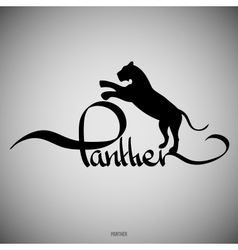 Panther Calligraphic elements vector image vector image