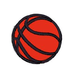 basketball ball game vector image