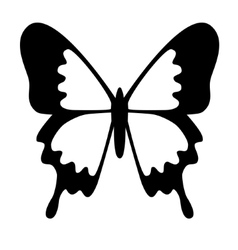 Blue Mountain Butterfly vector
