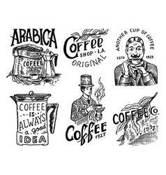 coffee shop logo and emblem cacao beans grains vector image