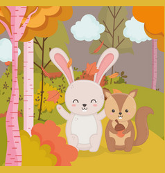 cute rabbit and squirel with acorn forest hello vector image