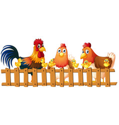 chickens and chicks behind fence vector image vector image