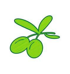 olives sign lemon scribble vector image