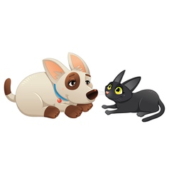 Lovely cat and dog vector image vector image
