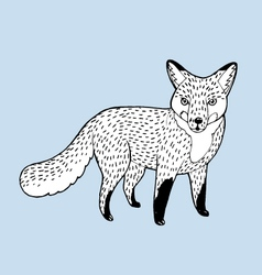 draw fox vector image