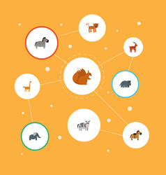 Flat icons horse hippopotamus chipmunk and other vector