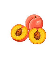 juicy peach whole and half vector image