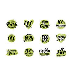 natural organic logo or label eco set badges vector image