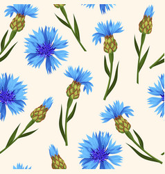 seamless pattern with blue corn flowers vector image