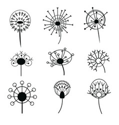 Set dandelions collection stylized vector