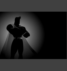 superhero in gallant pose vector image vector image
