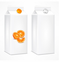 packing template for orange vector image vector image
