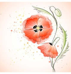 Red Poppy Bouquet vector image vector image