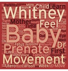 Prenatal Movement And Parental Response I Can Feel vector image