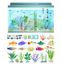 Aquarium with fish and decoration vector