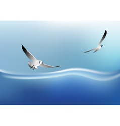 bird on the sea vector image
