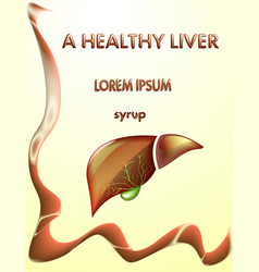 Healthy liver and gallbladder vector
