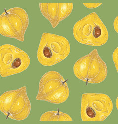 Seamless pattern ripe yellow lucuma vector